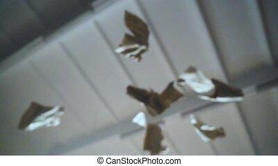 Paper sheet falling down slow motion FullHD