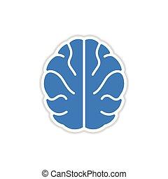 paper sticker on white background human brain