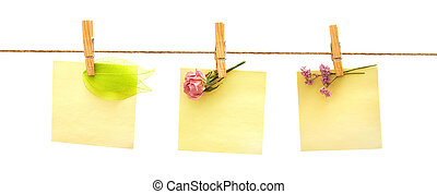 papers and flowers with clothes peg on white background