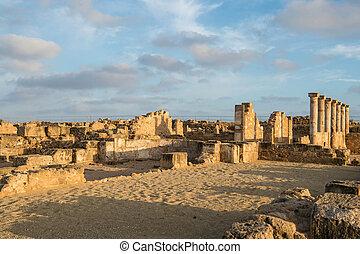 paphos, archeologico, parco, in, il, luce, di, il, sole sera, cipro