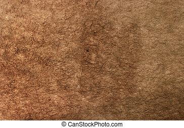 papier brun, a froissé