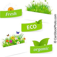 papier, kleverig, met, groen gras, en, bloem