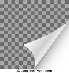 papier, pagina, krul, met, schaduw