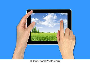 papier peint, main, touchpad, tenue, mâle, paysage
