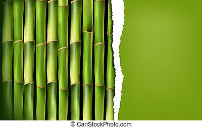 papier, tło, rozerwał, bambus