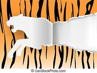 papier, tiger, het scheuren
