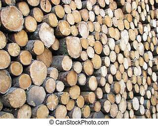 papier, uitbuiting, industrie, hout