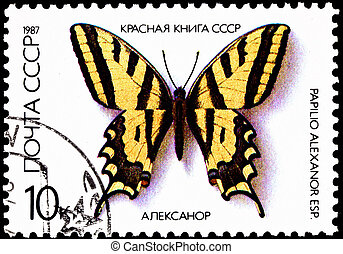 Papilio Alexanor, Yellow Swallowtail Butterfly - USSR- CIRCA...