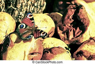 Images et photos de papillon pomme 2 483 images et photographies libres de droits de papillon - Pomme papillon ...