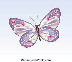 papillon, 9