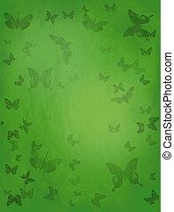 papillon, arrière-plan vert
