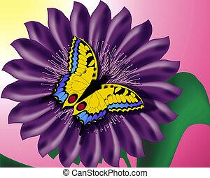 papillon, auf, blume