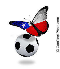 papillon, Chilien,  concept, aimer, voler,  -,  football, drapeau, équipe, balle, jouer