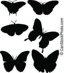 papillon, collection