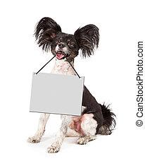 Papillon Dog Holding Blank Sign
