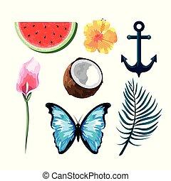 papillon, ensemble, fruits tropicaux, fleurs, ancre
