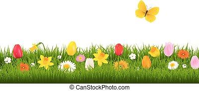 papillon, fleur, frontière