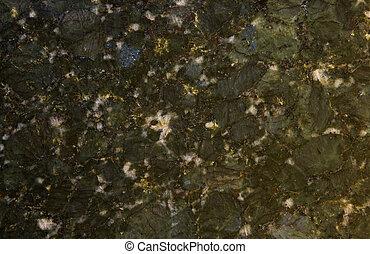 papillon, granit, vert
