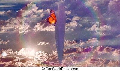 papillon, ovnis