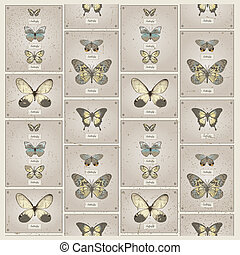 papillon, patttern, seamless
