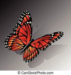 papillon, vecteur, monarque
