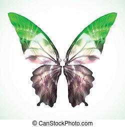 papillon, vibrant, vecteur, vert, isolated.
