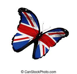 papillon, voler, isolé, drapeau, fond, anglaise, blanc