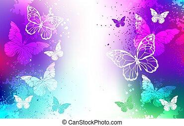 papillons, blanc, clair, fond