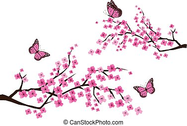 papillons, branches, sacura