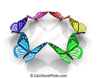 papillons, cercle, coloré
