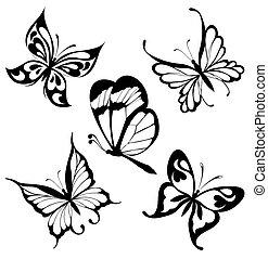 papillons, ensemble, noir, blanc, cette