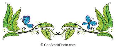 papillons, frontière