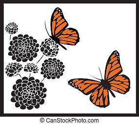 papillons monarque