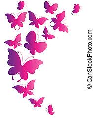 papillons, vecteur, conception
