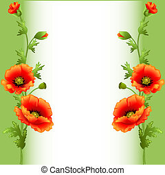 papoula, luminoso, flores, anunciando, fundo