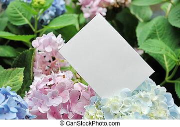 papper, Blomstrar, tom