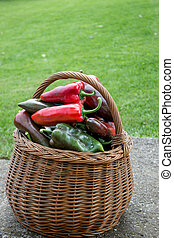 Paprika in a basket