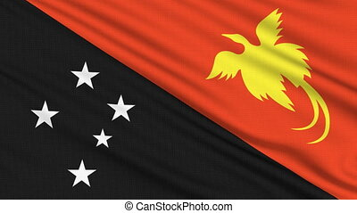 Papua New Guinea flag, with real structure of a fabric