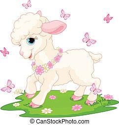 paques, papillons, agneau