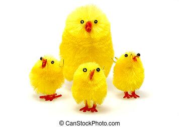 paques, poulets