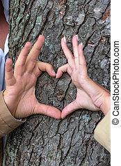 par, árvore, atrás de, courting