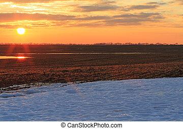 par, échelle, blé, neige, fauché