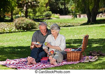 par ancião, fazendo piquenique, em, a, g