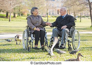 par ancião, parque