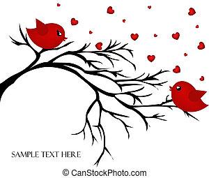 par, aves, rama, amoroso