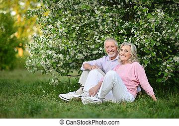 par bueno, sentado, en, primavera, parque
