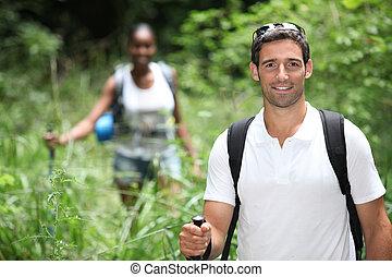 par caminhando, em, a, selva