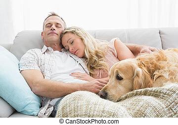 par cariñoso, dormir la siesta, en, sofá, con, su, perro