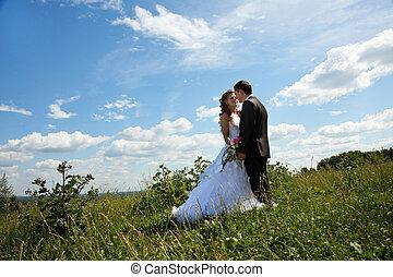 par casando, em, ensolarado, dia verão