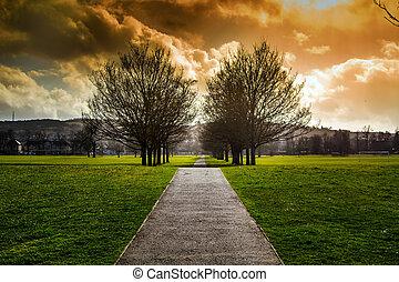 par, chemin, arbres